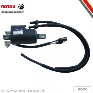 DOUBLE IGNITION COIL